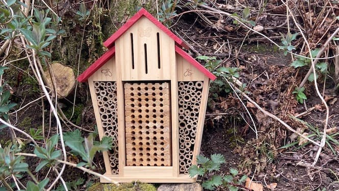 Making Your Own Bee or Insect Hotel PDF