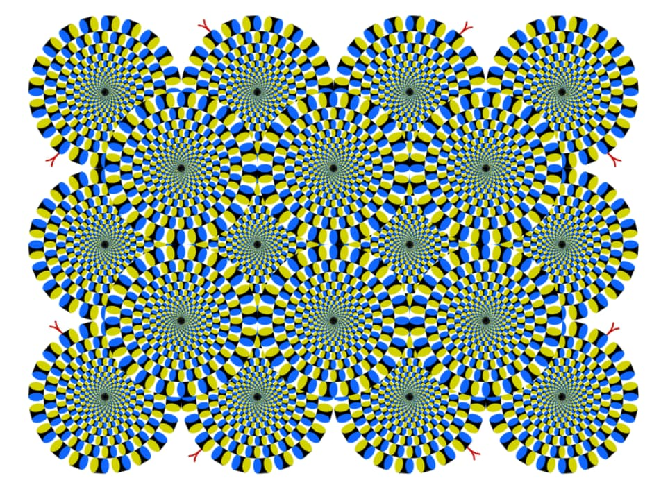 Akiyoshi Kitaoka's Optical Illusion