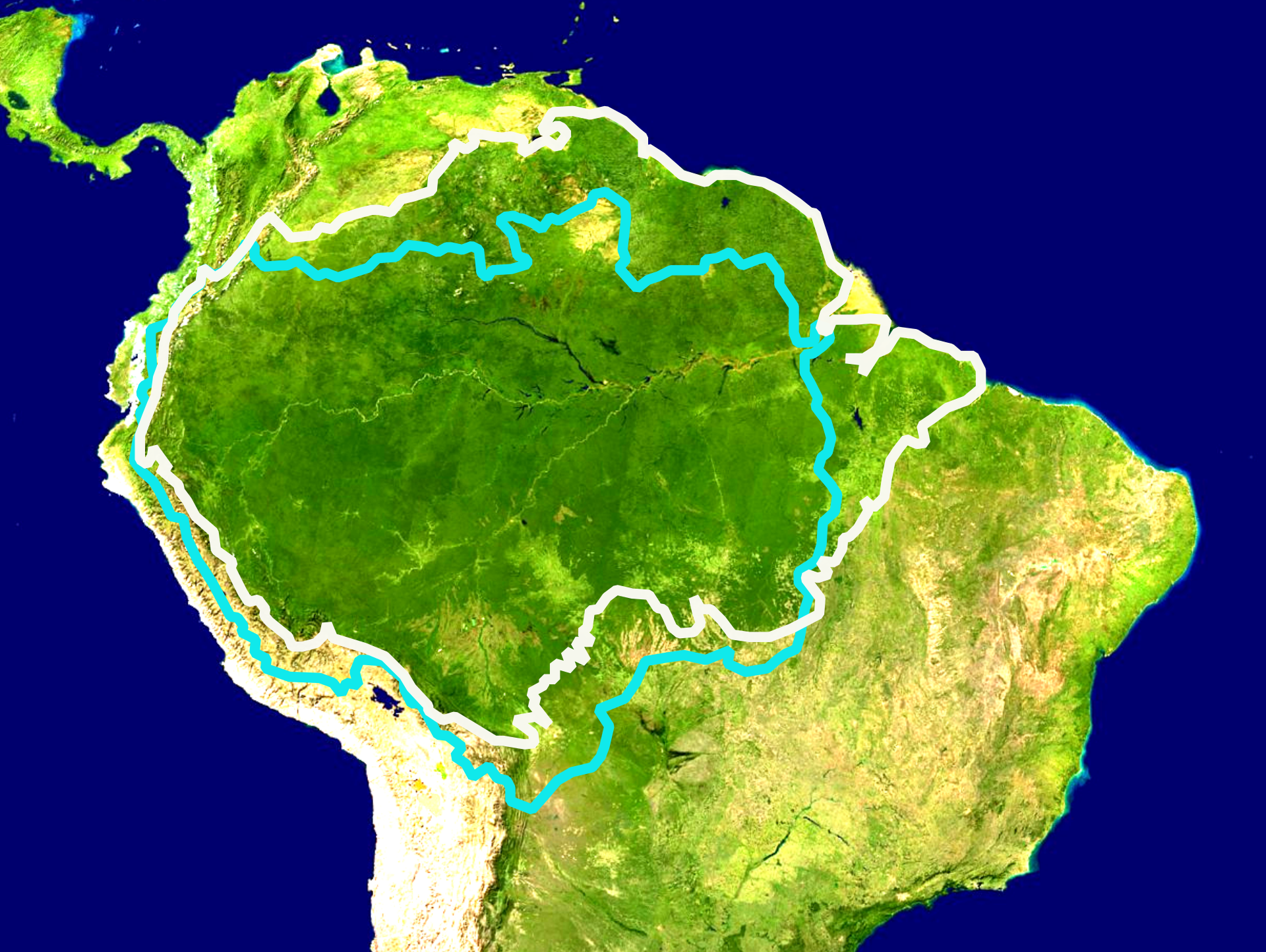 Amazon Rainforest Outline