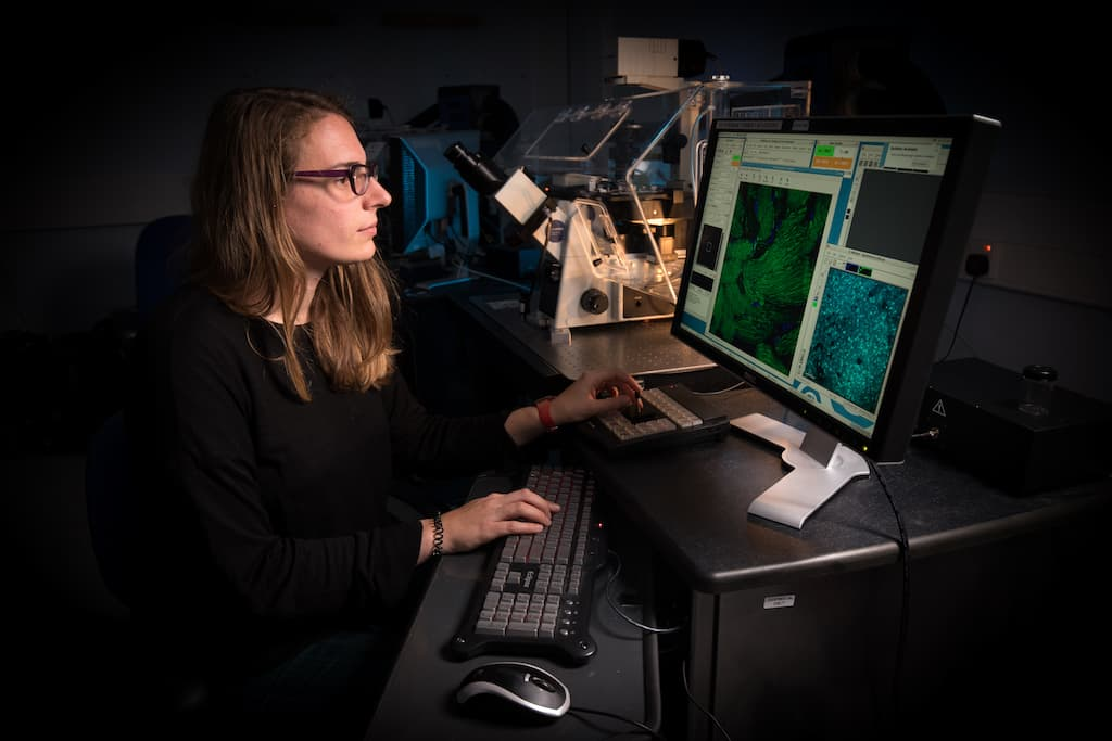 Scientist Using A Computer Connected To A Microscope (University of Dundee)