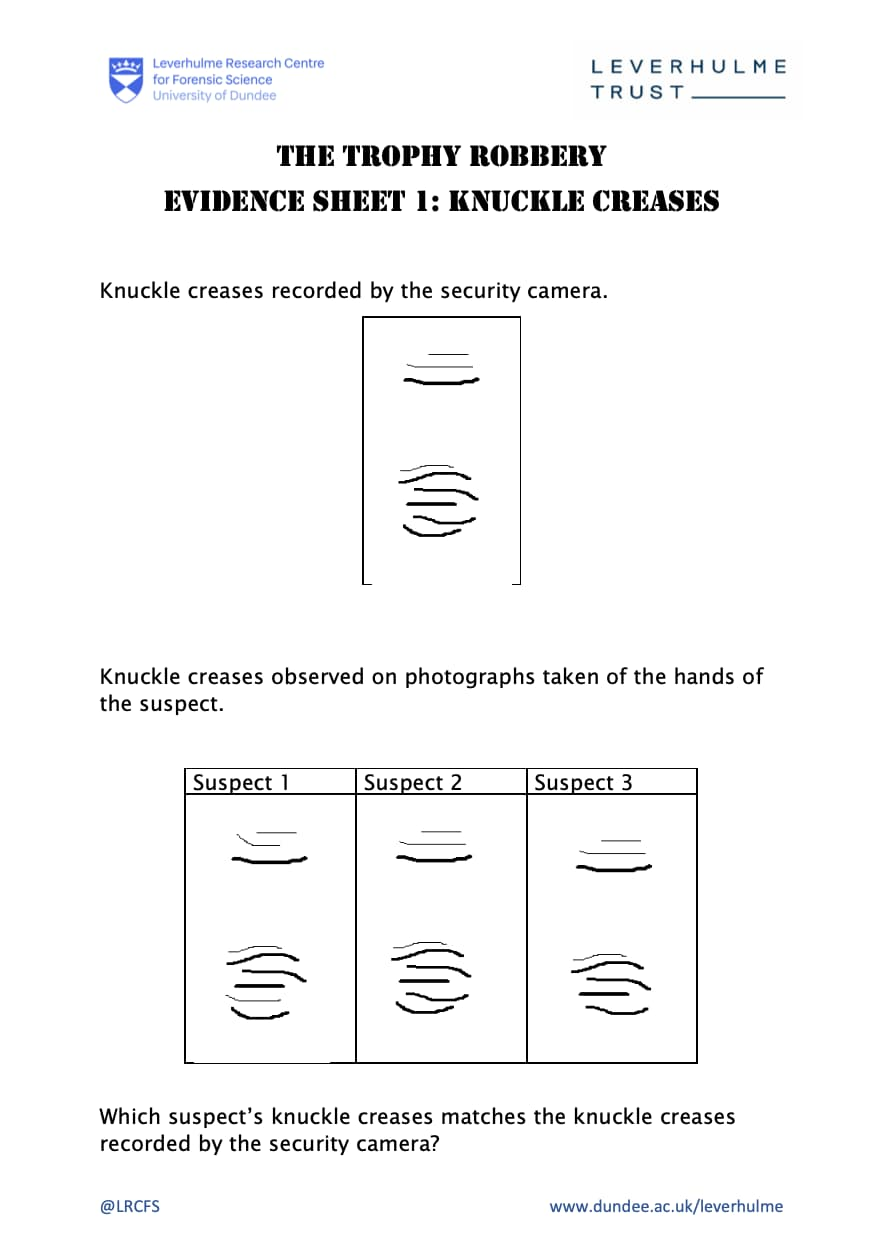 Evidence Sheet 1 - Knuckle Creases Worksheet
