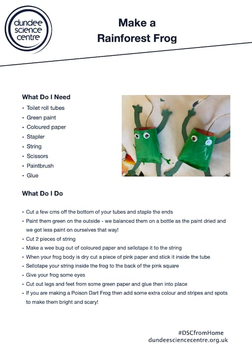Make a Rainforest Frog