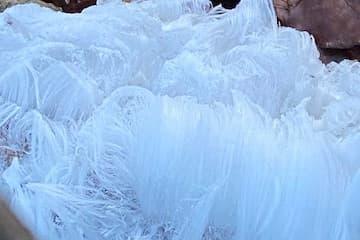 Mysterious 'Hair Ice'