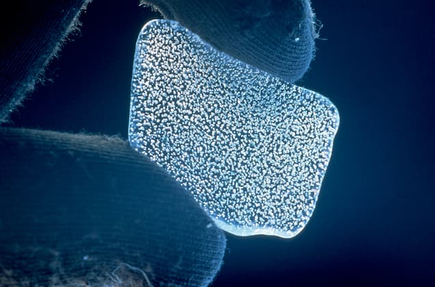 Photograph of Ice Core Bubbles