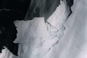 Amazing Icebergs!