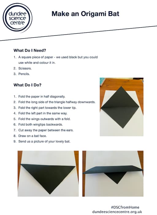 Make an Origami Bat (PDF) Worksheet