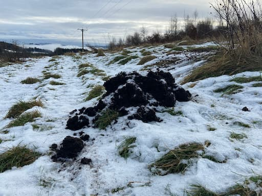Huge Molehill