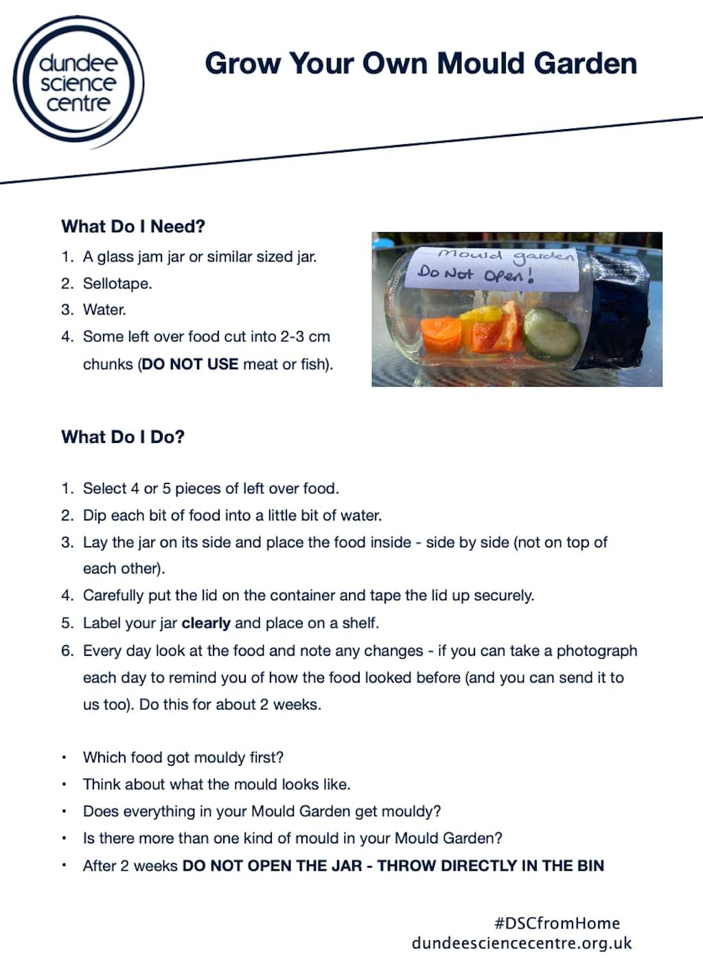 Mould Garden Activity Worksheet