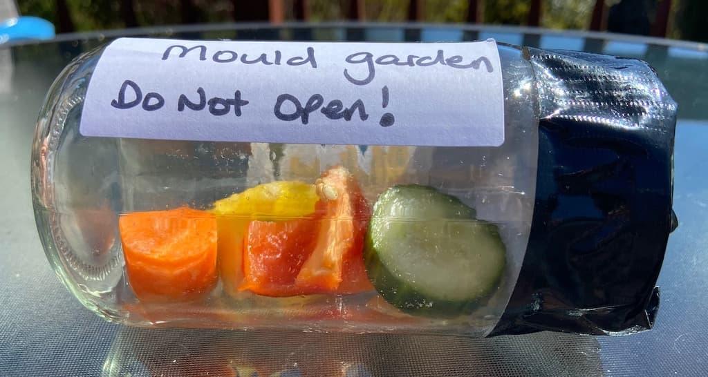 Mould Garden