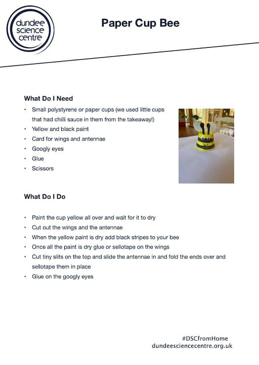 Paper Cup Bee Activity