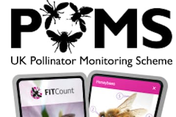 UK Pollinator Monitoring Scheme