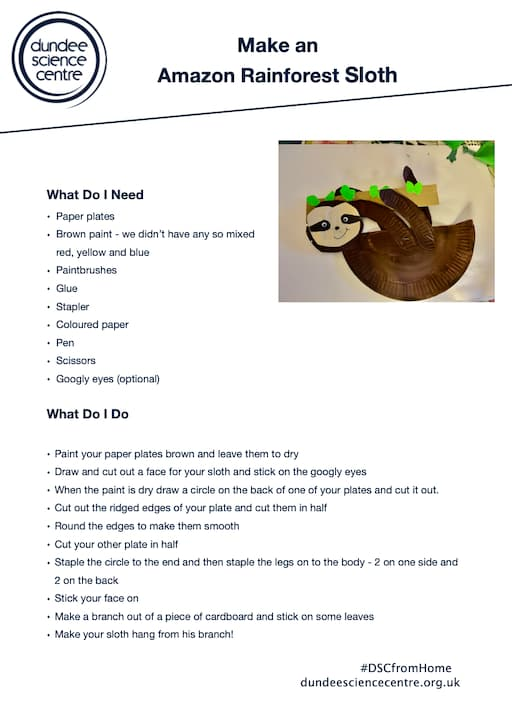 Make an Amazon Rainforest Sloth