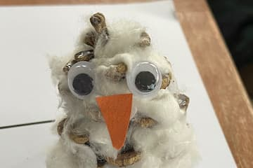Make Your Own Snowy Owl